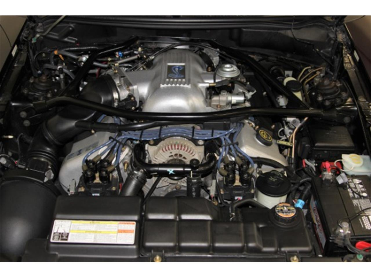Large Picture of 1996 Mustang SVT Cobra located in San Ramon California Offered by My Hot Cars - PKW8