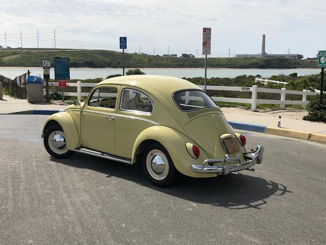 Picture of '64 Beetle - PL24