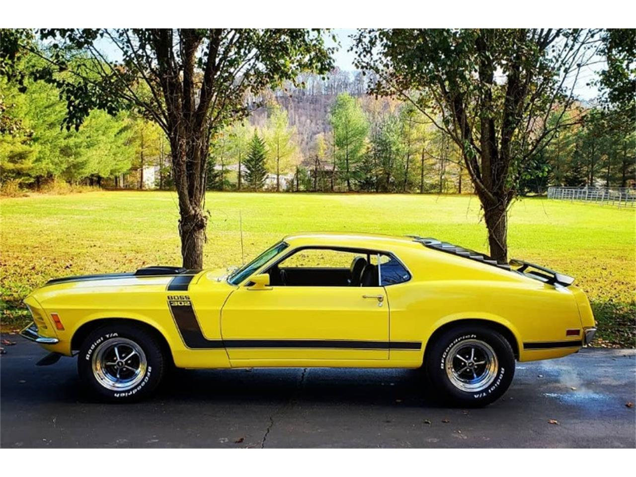 Large Picture of '70 Mustang - PL38