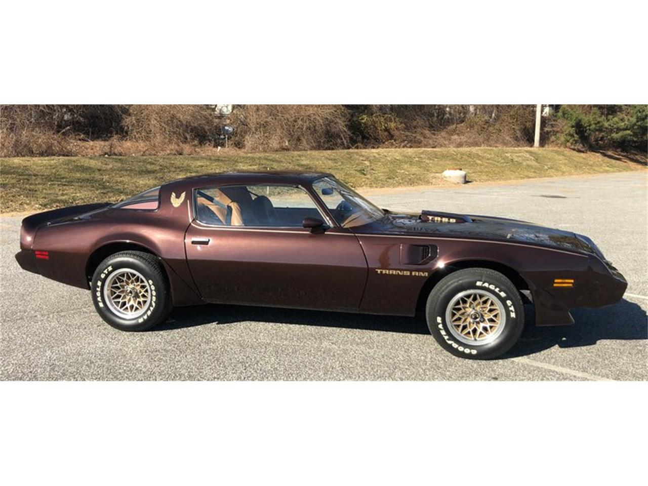 Large Picture of '79 Firebird Trans Am - PL5L