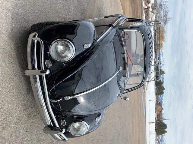 Picture of '60 Beetle - PLC6