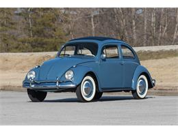 Picture of '59 Beetle - PLEC