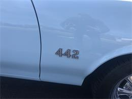 Picture of '70 442 - PLP0