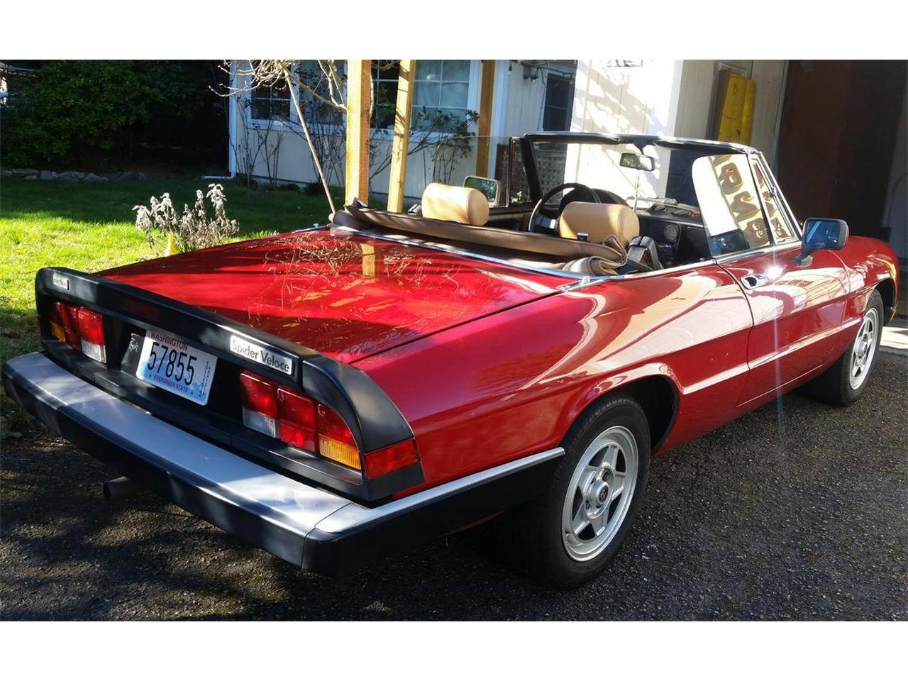 Large Picture of '86 Spider Veloce - PIKD
