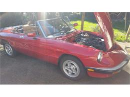 Picture of '86 Spider Veloce - PIKD