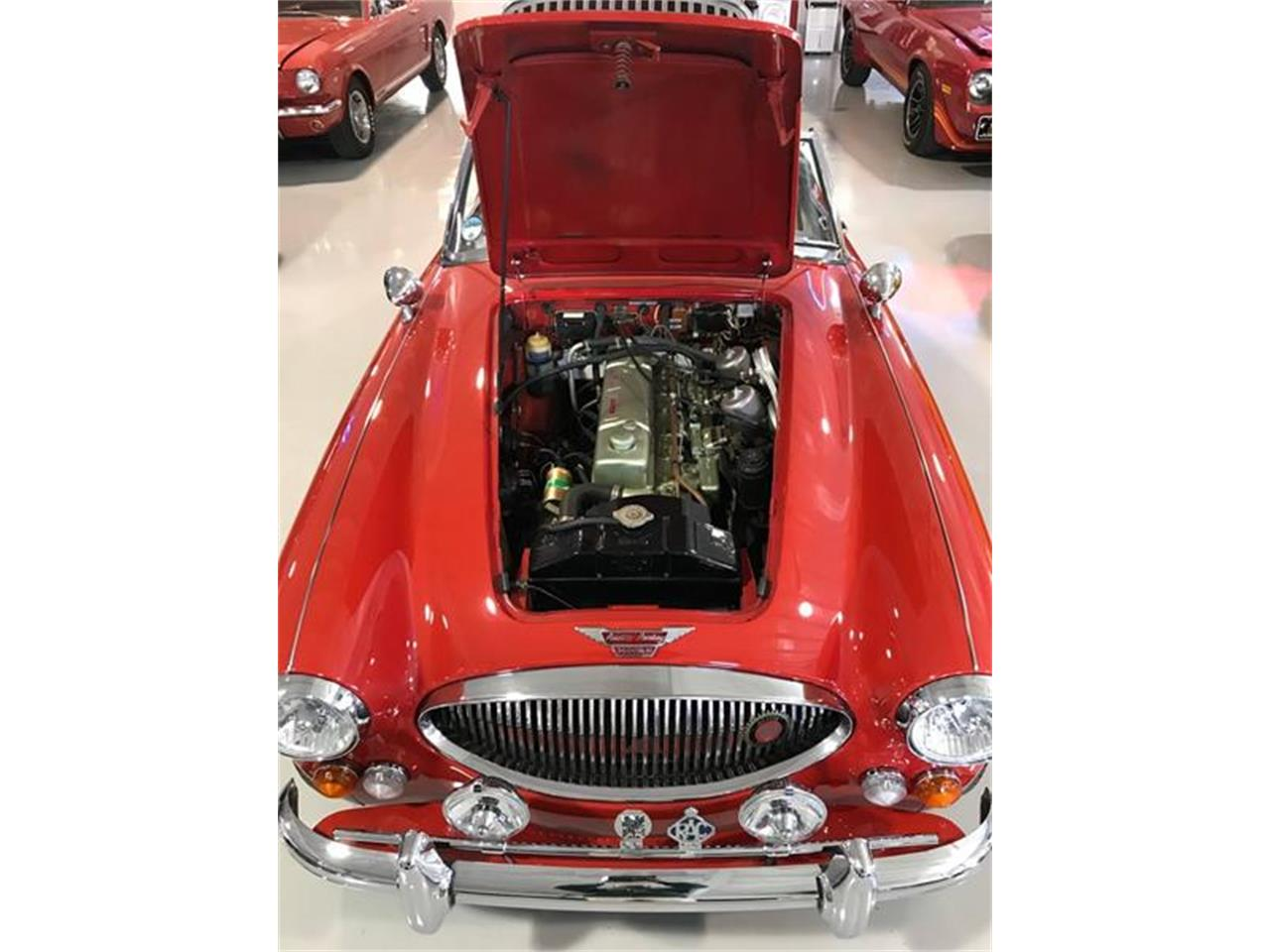 Large Picture of 1966 Austin-Healey 3000 located in Fredericksburg Texas - $59,500.00 Offered by Street Dreams Texas - PLVW