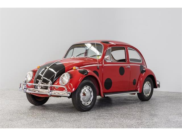 Picture of '65 Beetle - PM7Q
