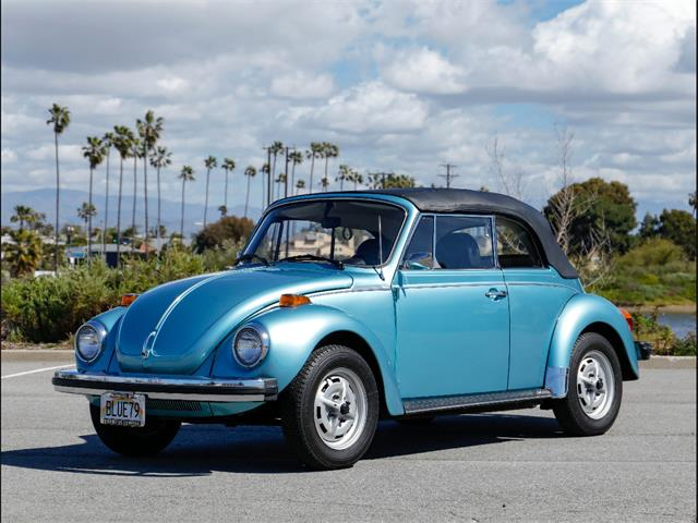 Picture of '79 Beetle - PM96