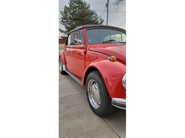 Picture of '68 Beetle - PNA1