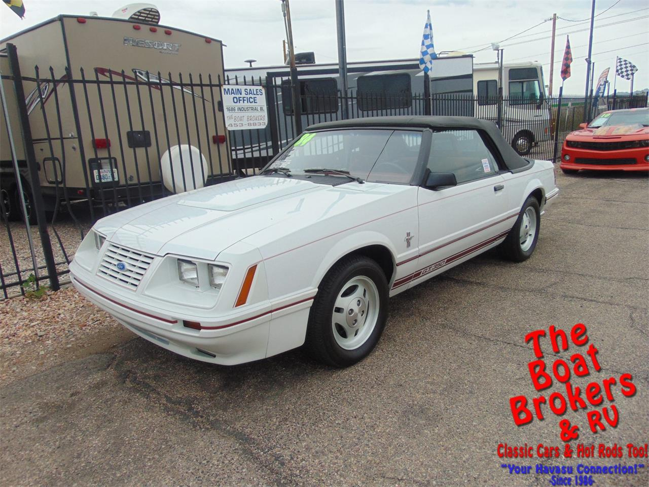 Large Picture of '84 Mustang - PNA5