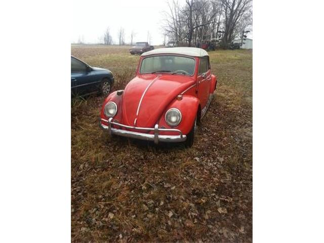 Picture of '65 Beetle - PNBK
