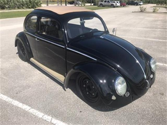 Picture of '57 Beetle - PNC4