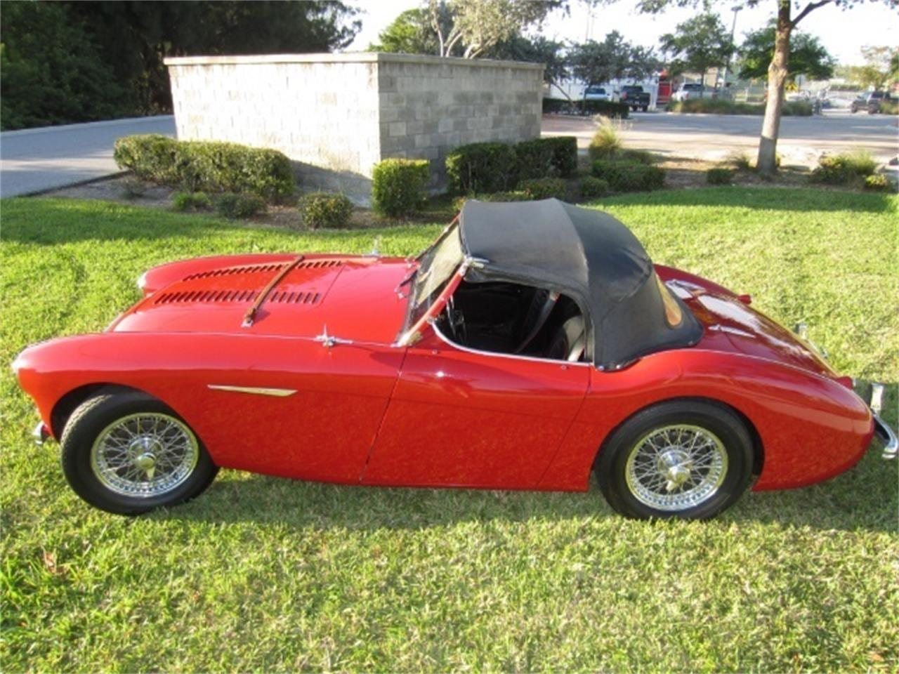 Large Picture of '55 Austin-Healey 100-4 located in Florida Offered by Autosport Group - PNCT