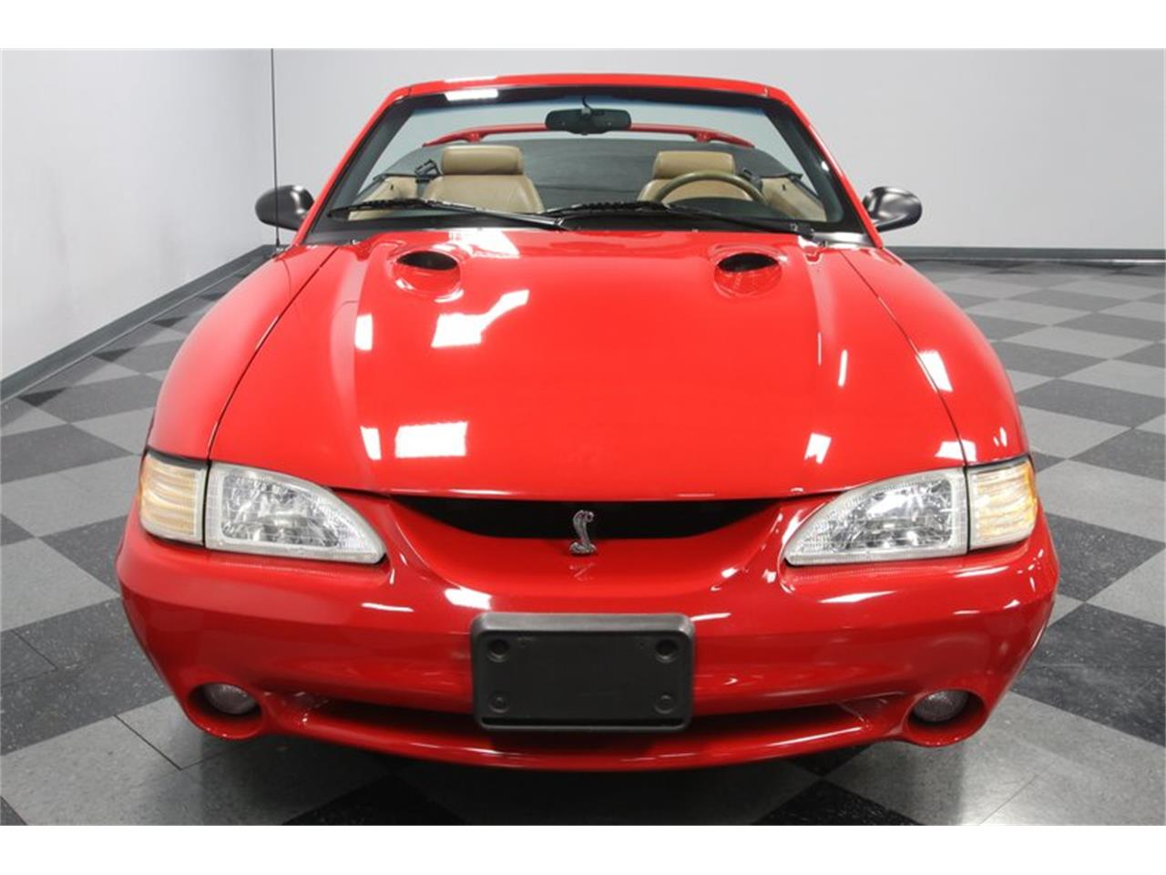 Large Picture of '97 Mustang - PNI8