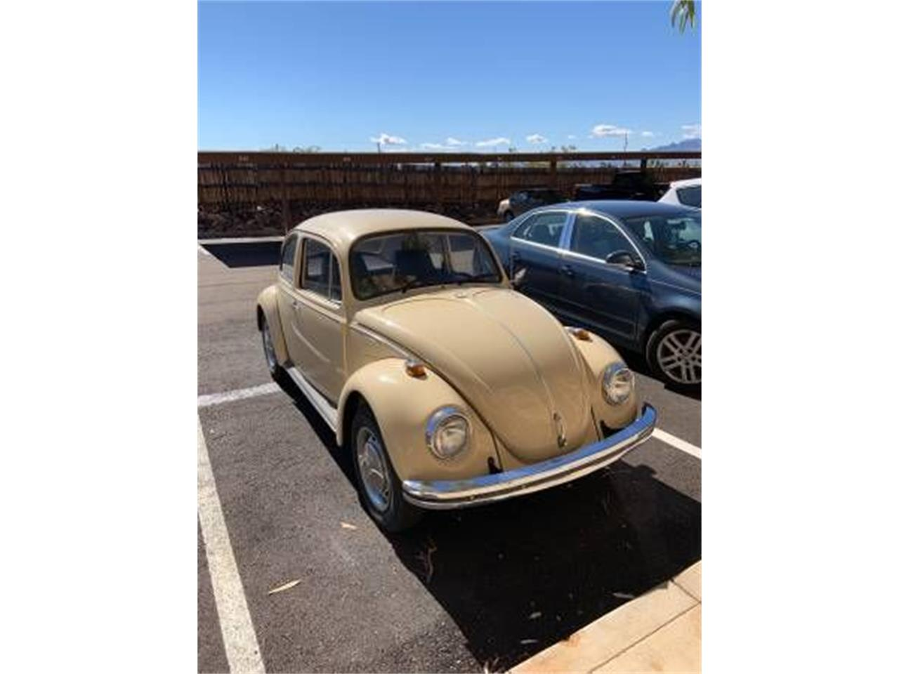 Large Picture of '68 Beetle - PNLZ