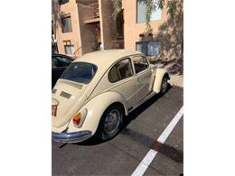 Picture of '68 Beetle - PNLZ