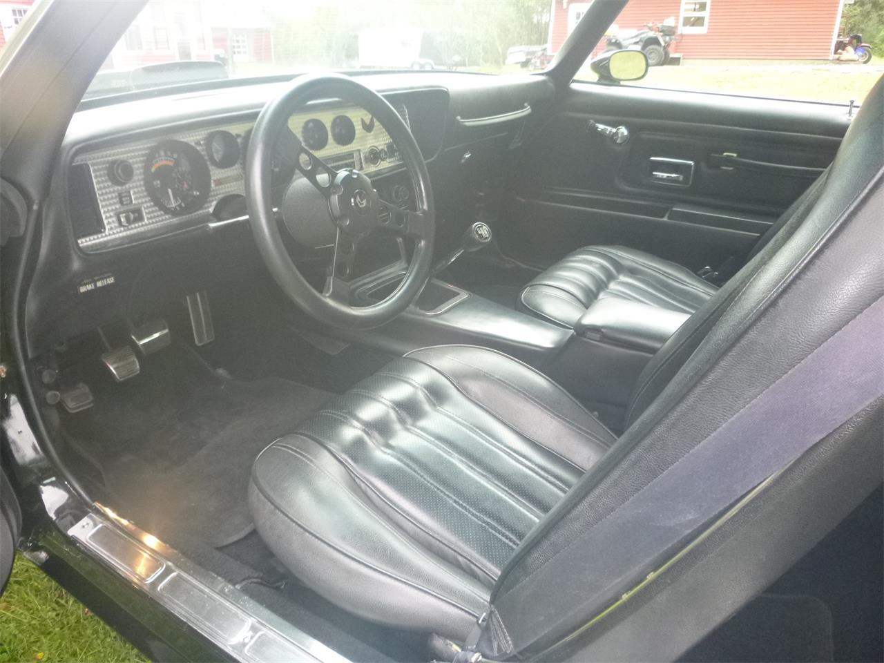 Large Picture of '76 Firebird Trans Am - PNPV