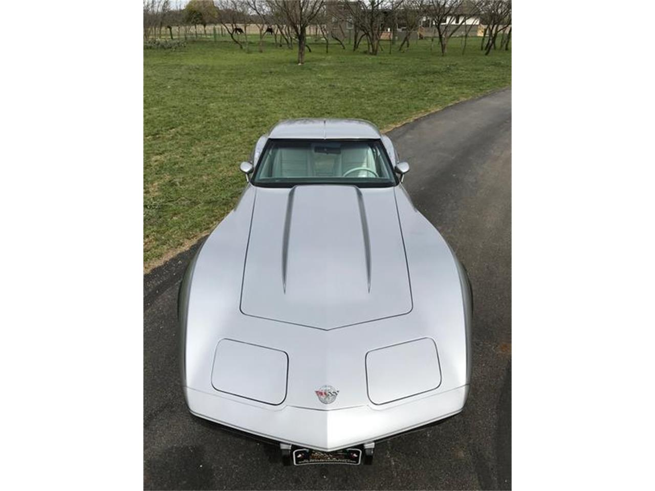 Large Picture of 1978 Corvette located in Fredericksburg Texas - PNTP