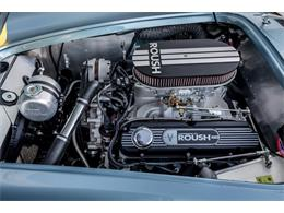 Picture of '64 Cobra - PNW2