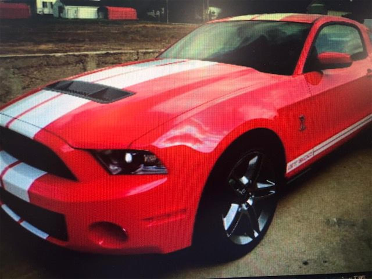 Large Picture of '10 Mustang - PNWT