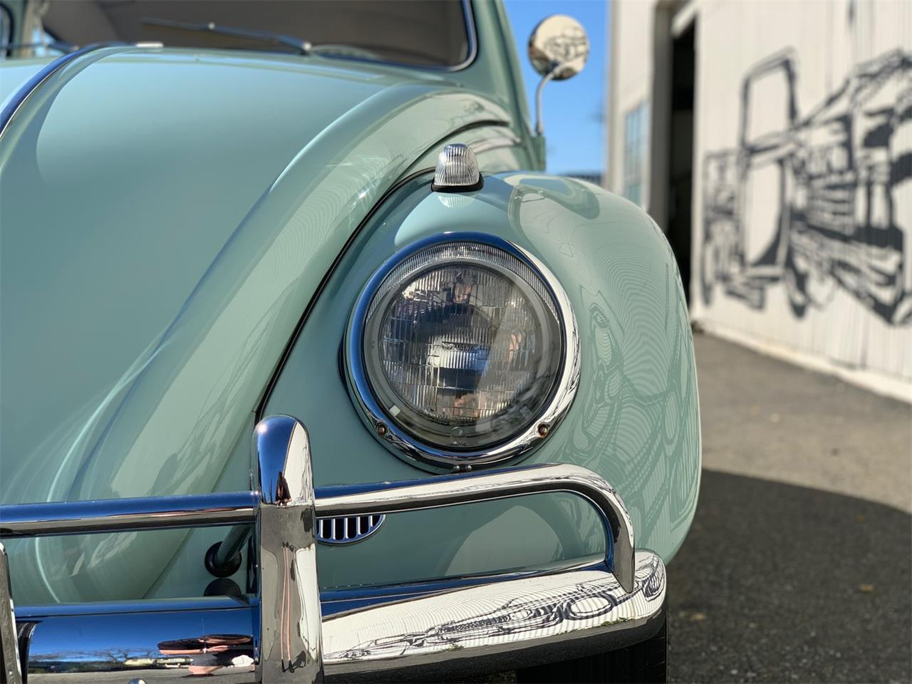 Large Picture of '61 Beetle - PO4E
