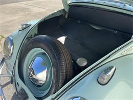 Picture of '61 Beetle - PO4E