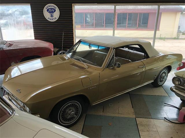 Picture of '65 Corvair - PITO