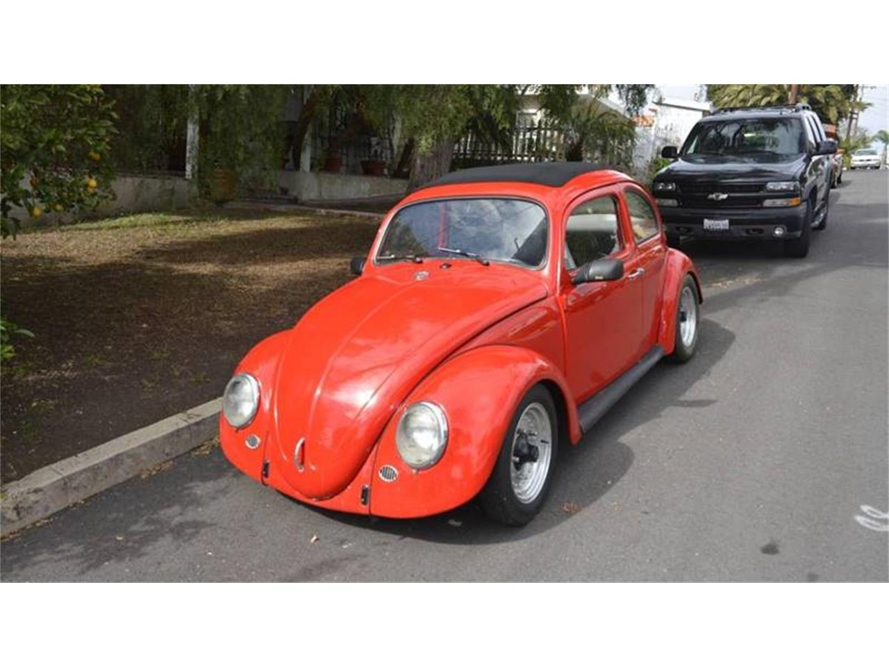 Large Picture of '63 Beetle - POTE