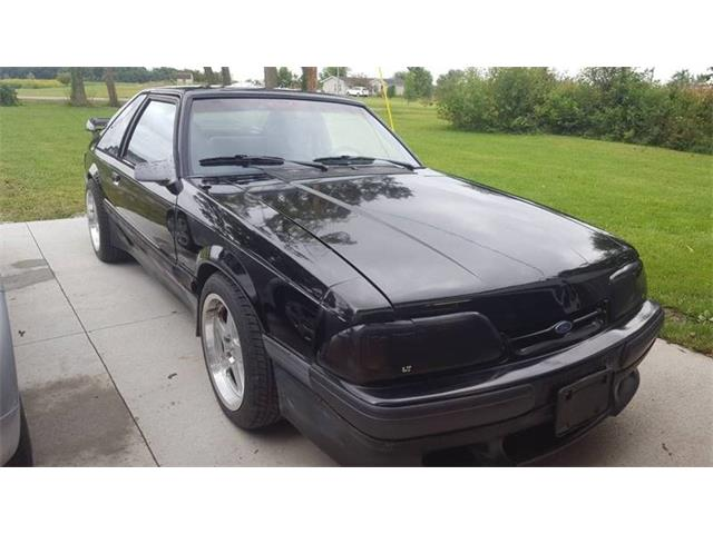 Picture of '90 Mustang - POY8