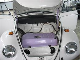 Picture of '69 Beetle - PP1A