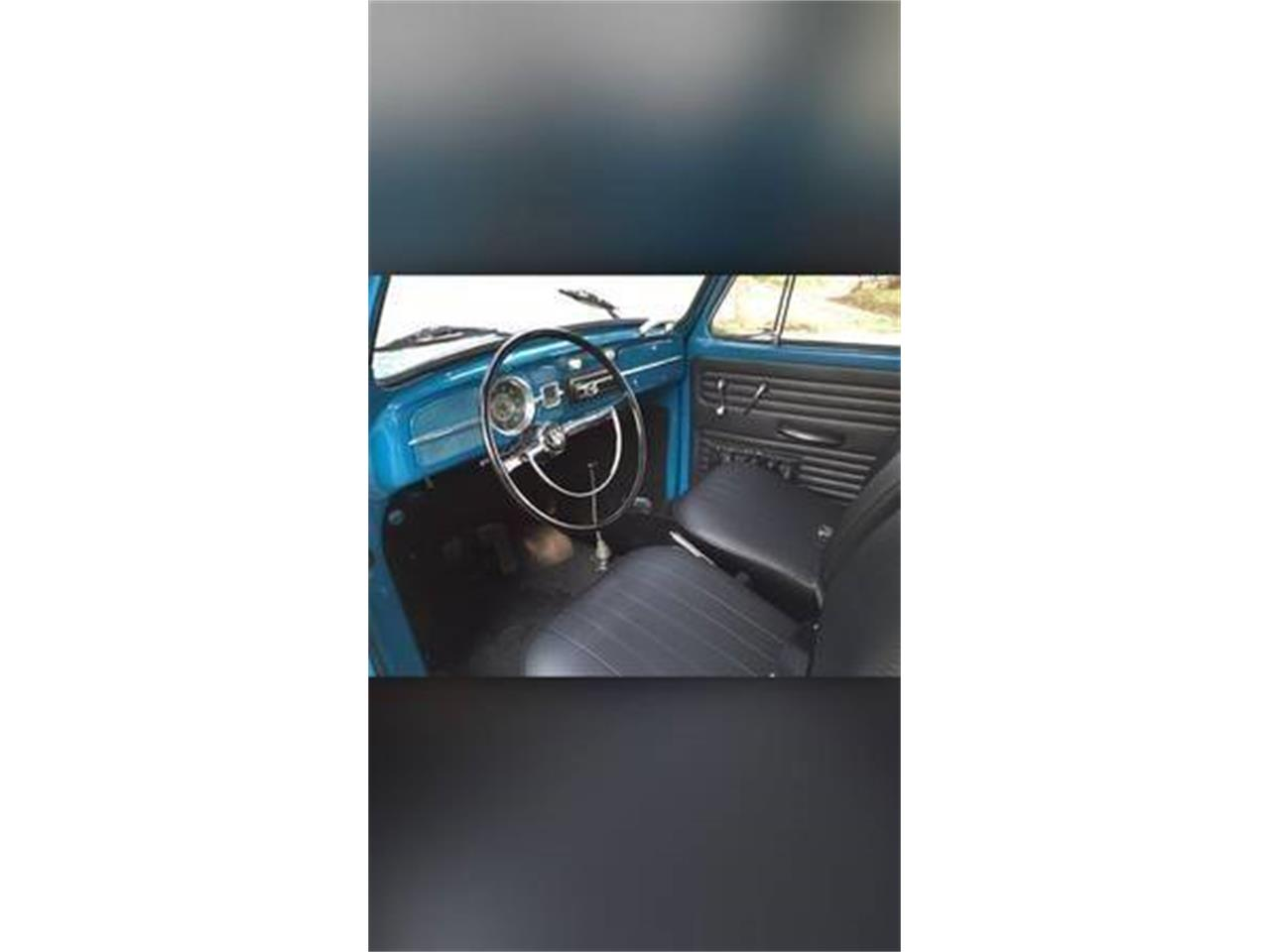 Large Picture of '65 Beetle - PP4U