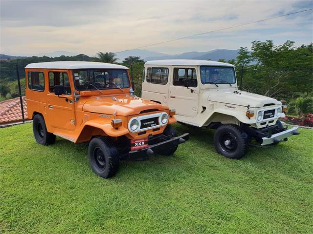 Picture of '77 Land Cruiser BJ40 - PPFG