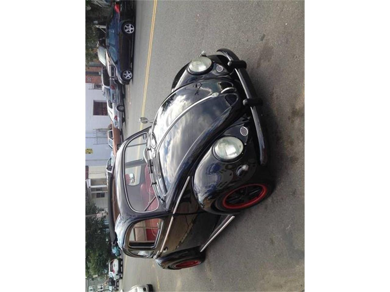 Large Picture of '56 Beetle - PPH8