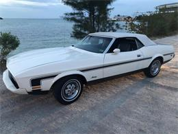 Picture of '73 Mustang - PPJ2