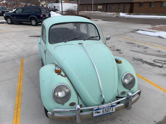 Picture of '65 Beetle - PPMA