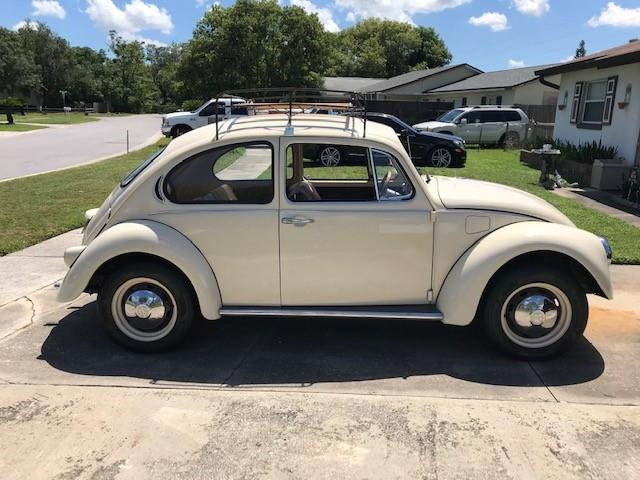 Picture of '72 Beetle - PPMH