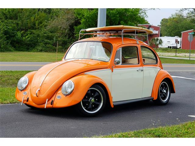 Picture of '66 Beetle - PPOL
