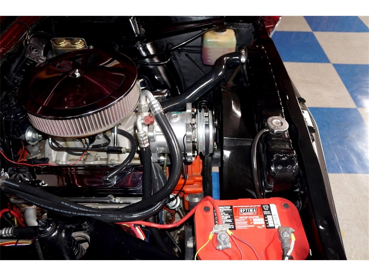 Large Picture of '66 Nova - PPPA