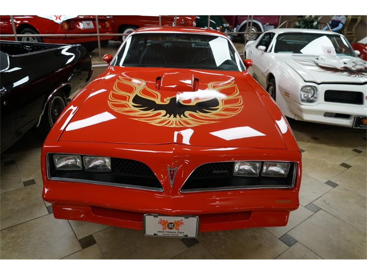 Large Picture of '78 Firebird - PQS3