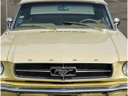 Picture of 1965 Mustang located in Marina Del Rey California - PR18