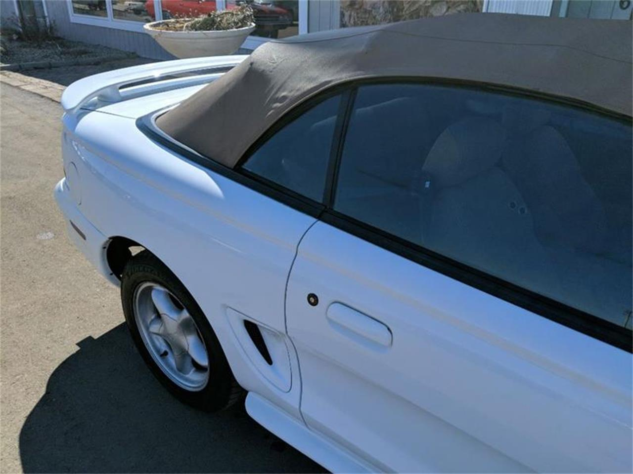 Large Picture of '95 Mustang - PR56