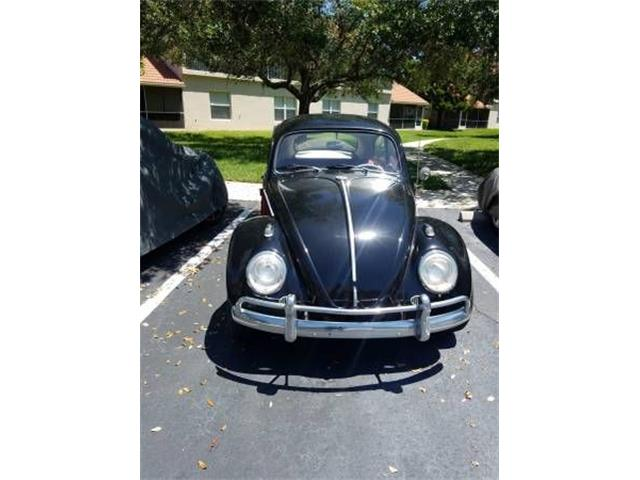 Picture of '63 Beetle - PR5A