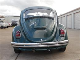 Picture of '69 Beetle - PR98