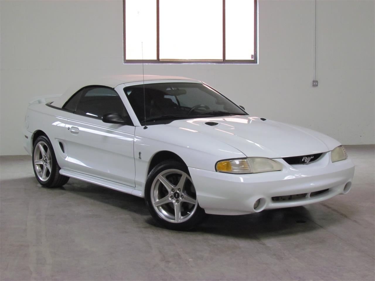 Large Picture of '98 Mustang - PRGI