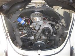 Picture of '71 Super Beetle - PRH2
