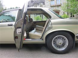 Picture of '87 XJ12 - PRHD
