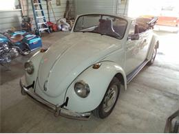 Picture of '69 Beetle - PRQ4