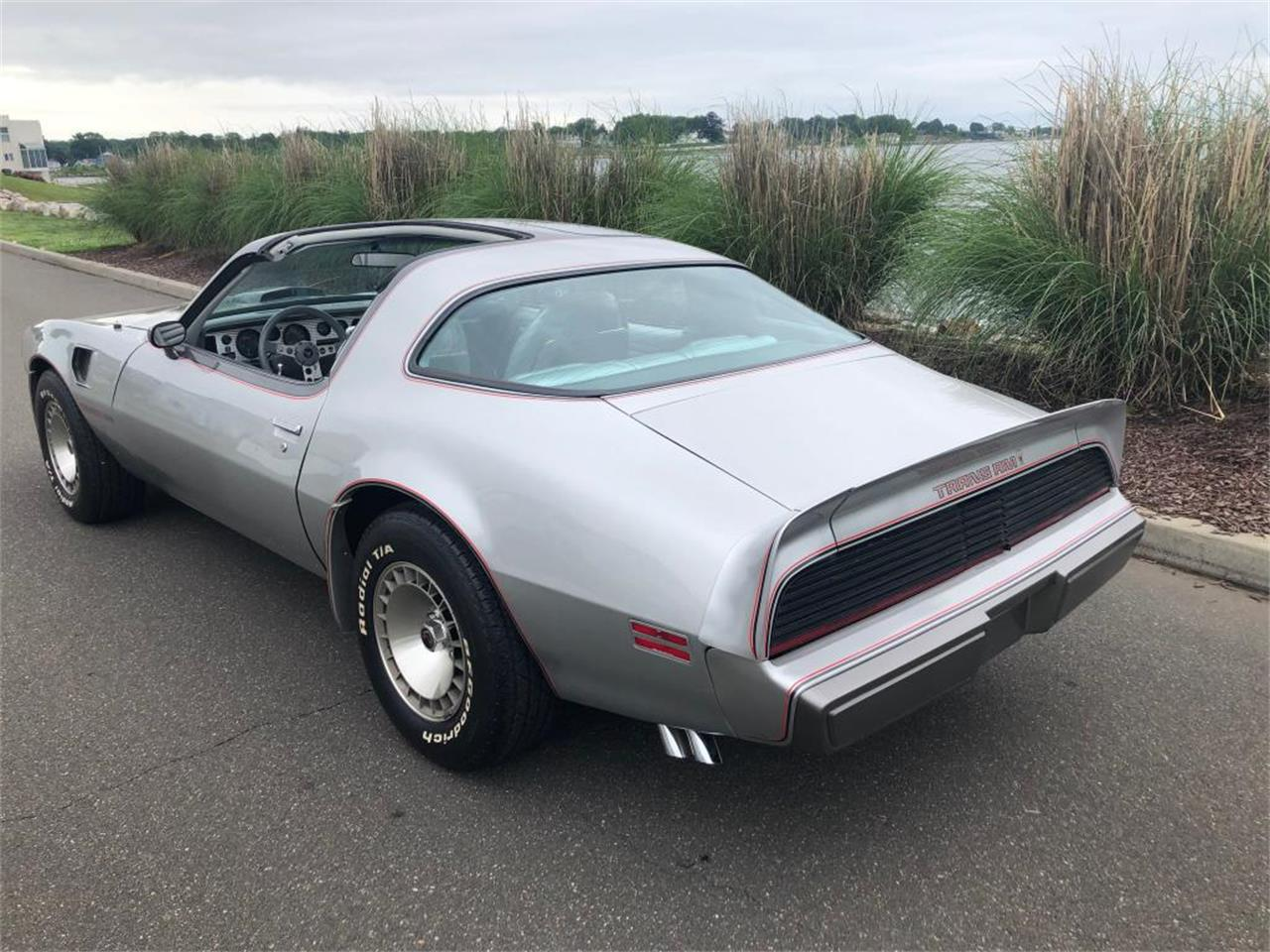 Large Picture of '79 Firebird Trans Am - PRZ6