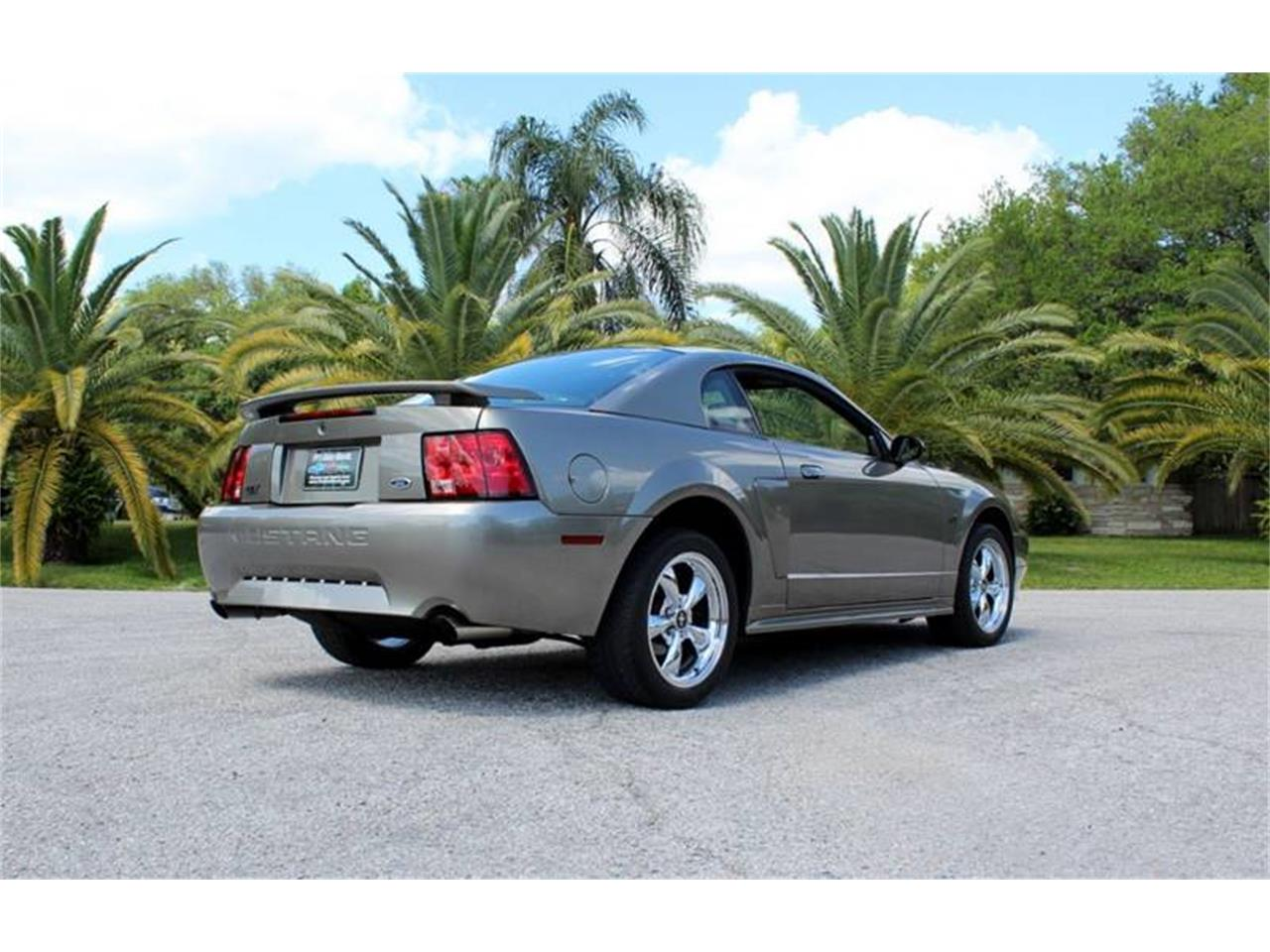 Large Picture of '01 Mustang - PSBF