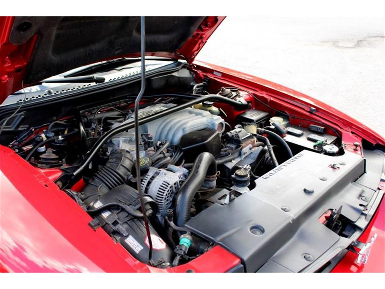 Large Picture of '94 Mustang - PSBH